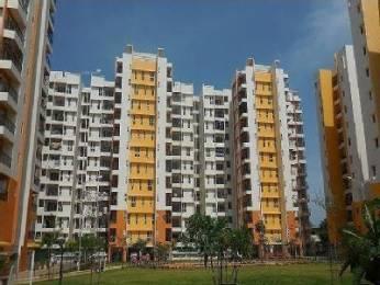 1290 sqft, 2 bhk Apartment in Olympia Grande Pallavaram, Chennai at Rs. 80.6000 Lacs