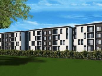 590 sqft, 1 bhk Apartment in Casagrand Bellissimo Alandur, Chennai at Rs. 58.7700 Lacs