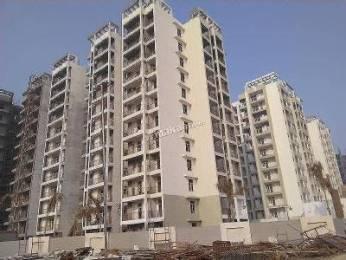 1638 sqft, 3 bhk Apartment in MR Shalimar City Pasaunda, Ghaziabad at Rs. 13500