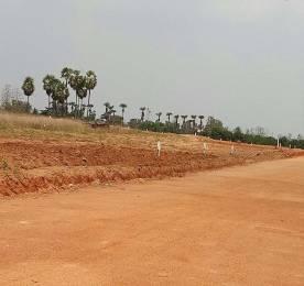 1503 sqft, Plot in Builder nandanavanam subhapradha Tagarapuvalasa, Visakhapatnam at Rs. 18.3700 Lacs
