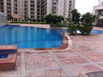 1576 sqft, 3 bhk Apartment in Umang Summer Palms Sector 86, Faridabad at Rs. 59.0000 Lacs