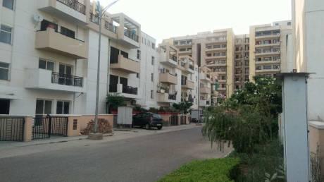 1380 sqft, 3 bhk BuilderFloor in BPTP Park Elite Floors Sector 85, Faridabad at Rs. 57.2500 Lacs