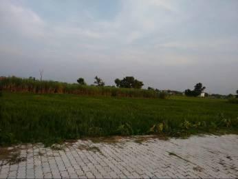 1744 sqft, Plot in Builder Kushinagar Land Kushinagar on Gorakhpur Road, Kushinagar at Rs. 8.0000 Lacs