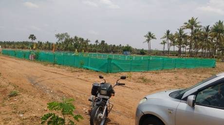 11000 sqft, Plot in Builder Project Olappalayam Sengalipalayam Vellakovil Road, Tiruppur at Rs. 42.5000 Lacs