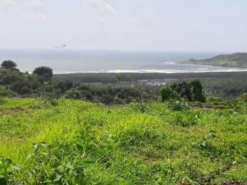 3229 sqft, Plot in Builder SEA VIEW PLOTS RatnagiriGanpati Pule Highway, Ratnagiri at Rs. 16.5000 Lacs