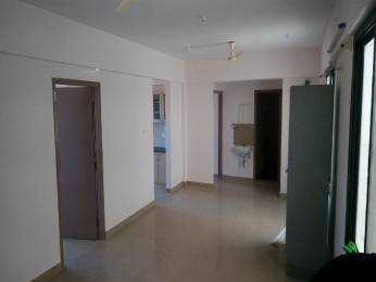 1338 sqft, 3 bhk Apartment in Ahad Silver Pearl Hosa Road, Bangalore at Rs. 20000