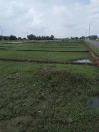 648 sqft, Plot in Builder vaIdik vihar Rai Bareilly road, Lucknow at Rs. 2.9225 Lacs