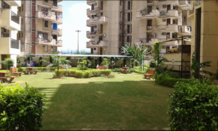 820 sqft, 2 bhk Apartment in Diamond Multistate Co-operative Group Housing Society Ltd. Height Chhawla, Delhi at Rs. 32.8000 Lacs