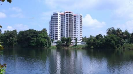 1180 sqft, 2 bhk Apartment in SFS Aqua Greens Aluva, Kochi at Rs. 62.0000 Lacs