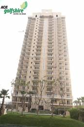 1195 sqft, 2 bhk Apartment in Ace Golfshire Sector 150, Noida at Rs. 72.5963 Lacs