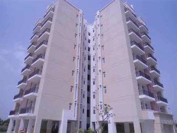 1100 sqft, 2 bhk Apartment in Omaxe New Heights Sector 78, Faridabad at Rs. 41.2456 Lacs