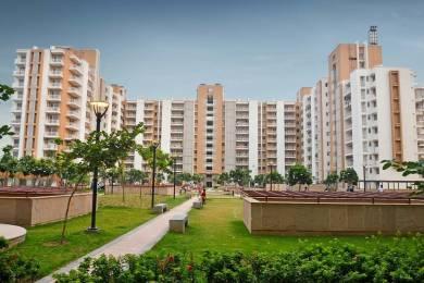1400 sqft, 3 bhk Apartment in Puri Pratham Sector 84, Faridabad at Rs. 52.3569 Lacs