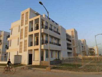 1445 sqft, 3 bhk BuilderFloor in Puri VIP Floors Sector 81, Faridabad at Rs. 68.9456 Lacs