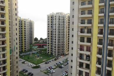 1303 sqft, 2 bhk Apartment in RPS Savana Sector 88, Faridabad at Rs. 51.2548 Lacs