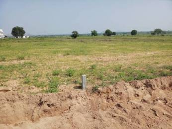 8100 sqft, Plot in Builder Project Amangal, Hyderabad at Rs. 9.5000 Lacs