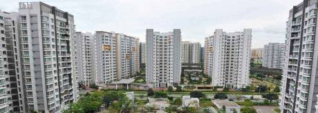 1475 sqft, 3 bhk Apartment in Diamond Multistate Co-operative Group Housing Society Ltd. Height Chhawla, Delhi at Rs. 42.0000 Lacs