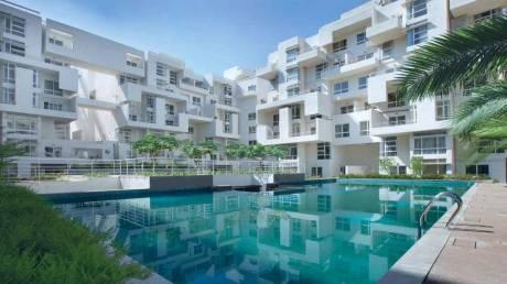 1627 sqft, 3 bhk Apartment in Rohan Mithila Viman Nagar, Pune at Rs. 42000