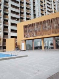 1376 sqft, 3 bhk Apartment in Gala Marigold Bopal, Ahmedabad at Rs. 39.0000 Lacs