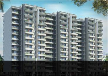486 sqft, 1 bhk Apartment in Amolik Heights Sector 88, Faridabad at Rs. 15.3000 Lacs