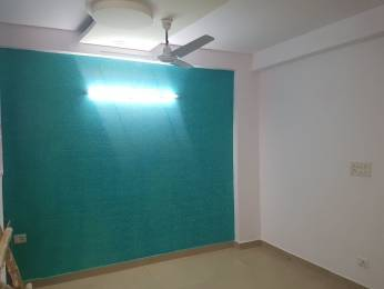 1350 sqft, 3 bhk BuilderFloor in Builder builder floor in noida sector 49 Sector 49, Noida at Rs. 40.0000 Lacs