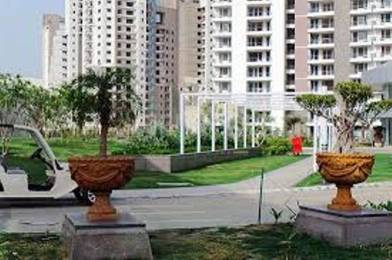 1294 sqft, 2 bhk Apartment in Great Value Sharanam Sector 107, Noida at Rs. 17000