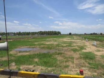 1250 sqft, Plot in Builder CMDA Approved layout AVADI next Thirunindravur Thiruninravur, Chennai at Rs. 12.4375 Lacs