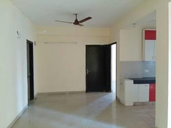 1303 sqft, 2 bhk Apartment in RPS Savana Sector 88, Faridabad at Rs. 52.0000 Lacs