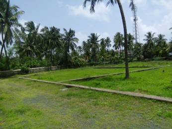 2000 sqft, Plot in Builder Plots Virar west Virar West, Mumbai at Rs. 21.6000 Lacs