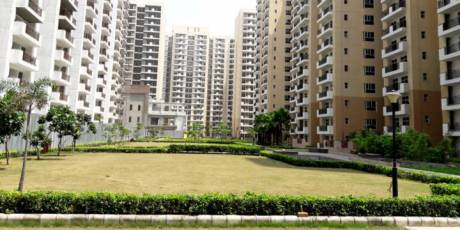 1245 sqft, 2 bhk Apartment in Builder Nirala Estate Noida Extn, Noida at Rs. 45.0000 Lacs