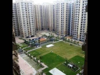 1350 sqft, 3 bhk Apartment in La Residentia Pvt Ltd La Residentia Techzone 4, Greater Noida at Rs. 10500
