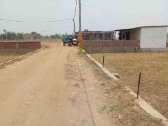 1200 sqft, Plot in Builder GC Colony Danapur, Patna at Rs. 14.3890 Lacs