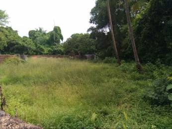 10495 sqft, Plot in Builder Project Candolim, Goa at Rs. 3.0000 Cr