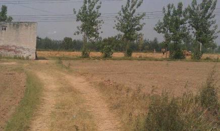 9058 sqft, Plot in Builder Project Phalodi Dechu Road, Jodhpur at Rs. 1.0100 Cr