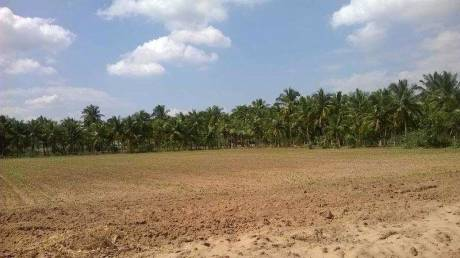 1100 sqft, Plot in Builder Project Phalodi Dechu Road, Jodhpur at Rs. 1.2500 Cr