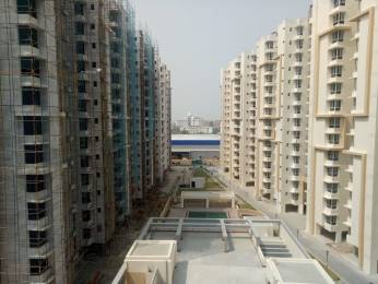 1240 sqft, 2 bhk Apartment in Viraj Constructions BBD Green City Faizabad Road, Lucknow at Rs. 40.0000 Lacs
