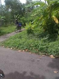 1287 sqft, Plot in Builder owner property Koonammavu, Kochi at Rs. 4.0000 Lacs