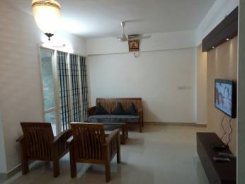 1450 sqft, 3 bhk Apartment in Panjos Builders Stadia Kaloor, Kochi at Rs. 40000