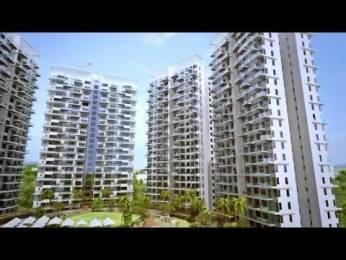 811 sqft, 2 bhk Apartment in D P Bird Ville Balewadi, Pune at Rs. 62.6600 Lacs