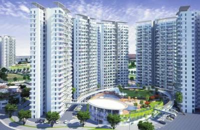 986 sqft, 3 bhk Apartment in D P Bird Ville Balewadi, Pune at Rs. 80.3700 Lacs