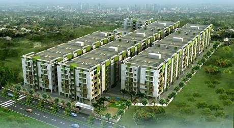 1140 sqft, 2 bhk Apartment in Novus Infra Pvt Ltd Florence Village Gajuwaka, Visakhapatnam at Rs. 33.5000 Lacs