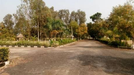 1440 sqft, Plot in Builder Project Amtala, Kolkata at Rs. 8.0000 Lacs