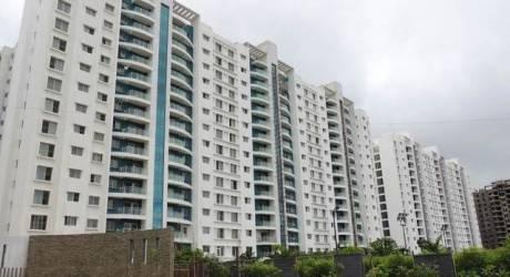 809 sqft, 2 bhk Apartment in Pegasus Megapolis Springs Hinjewadi, Pune at Rs. 42.0000 Lacs