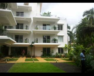 900 sqft, 1 bhk Apartment in Builder Project Arpora, Goa at Rs. 70.0000 Lacs