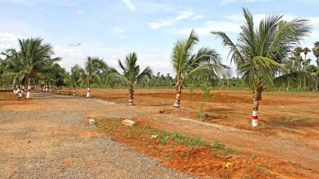 2115 sqft, Plot in Builder Project Gandimaisamma, Hyderabad at Rs. 39.9500 Lacs