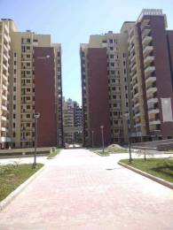 1670 sqft, 3 bhk Apartment in Army Welfare Housing Organisation AWHO Apartment Sector 114 Mohali, Mohali at Rs. 14000