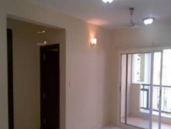 1100 sqft, 2 bhk Apartment in Builder Project Civil Lines, Allahabad at Rs. 7500