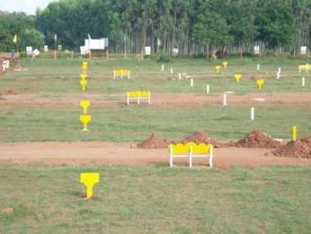 300 sqft, Plot in Builder smart faridabad city Palla, Faridabad at Rs. 1.1600 Lacs