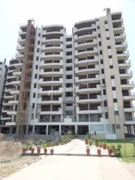 3 BHK Flat available with Reserved Car Parking