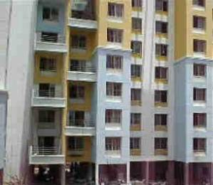 1300 sqft, 3 bhk Apartment in Pentagon Fortune East Kharadi, Pune at Rs. 75.0000 Lacs