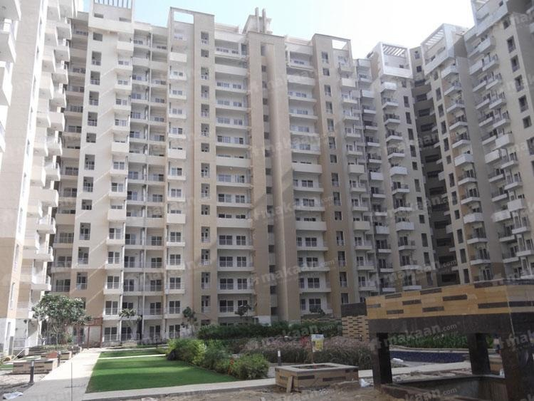 1000 sq ft 2BHK 2BHK+2T (1,000 sq ft) Property By Ajmani Estates In Ajnara Daffodil, Phase 2 Noida Extension
